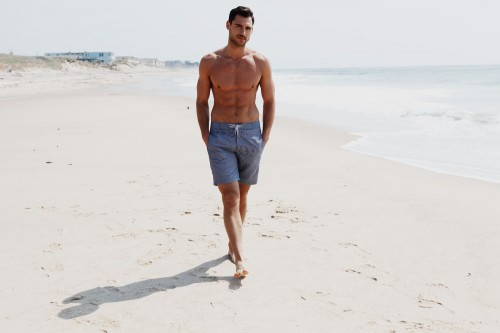 image of Onia Swim trunks
